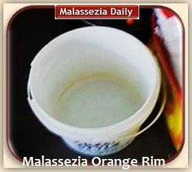 Malassezia Orange Rim 1 MD