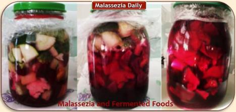 Malassezia and Fermented Foods MD